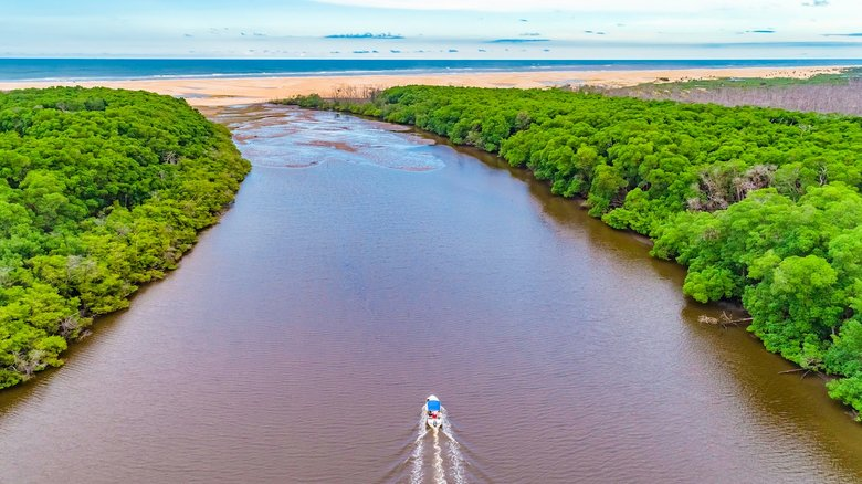delta do parnaiba o delta das americas rio - Delta do Parnaíba - Um santuário ecológico do Brasil