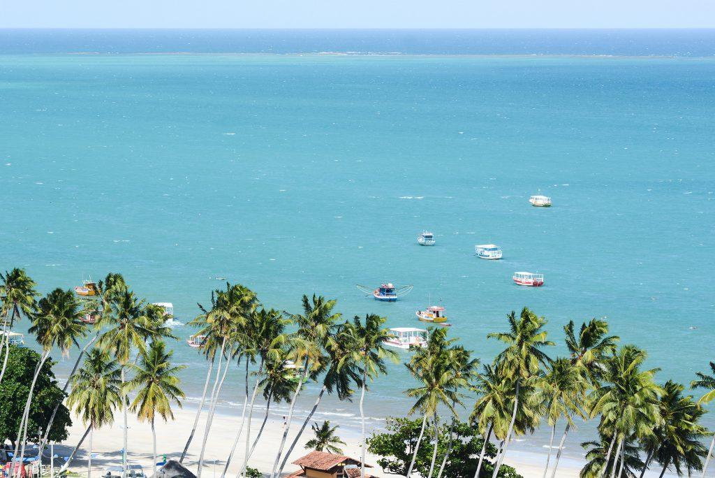 40850123031 c9423868e2 k 1024x684 - Maragogi: Descubra o Caribe Brasileiro