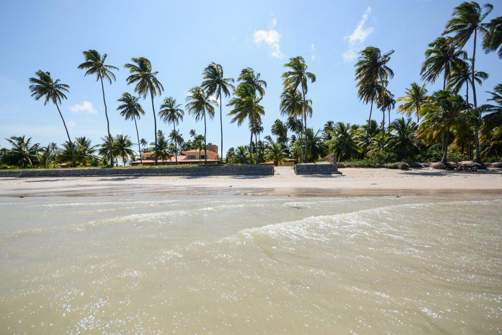 40850125041 dde6b7675d k 1024x684 - Maragogi: Descubra o Caribe Brasileiro