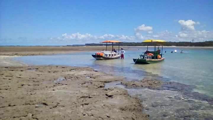 IMG 20180814 WA0072 - Maragogi: Descubra o Caribe Brasileiro