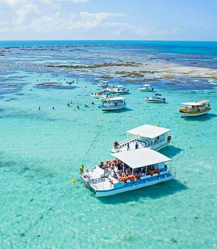 IMG 20180814 WA0175 - Maragogi: Descubra o Caribe Brasileiro
