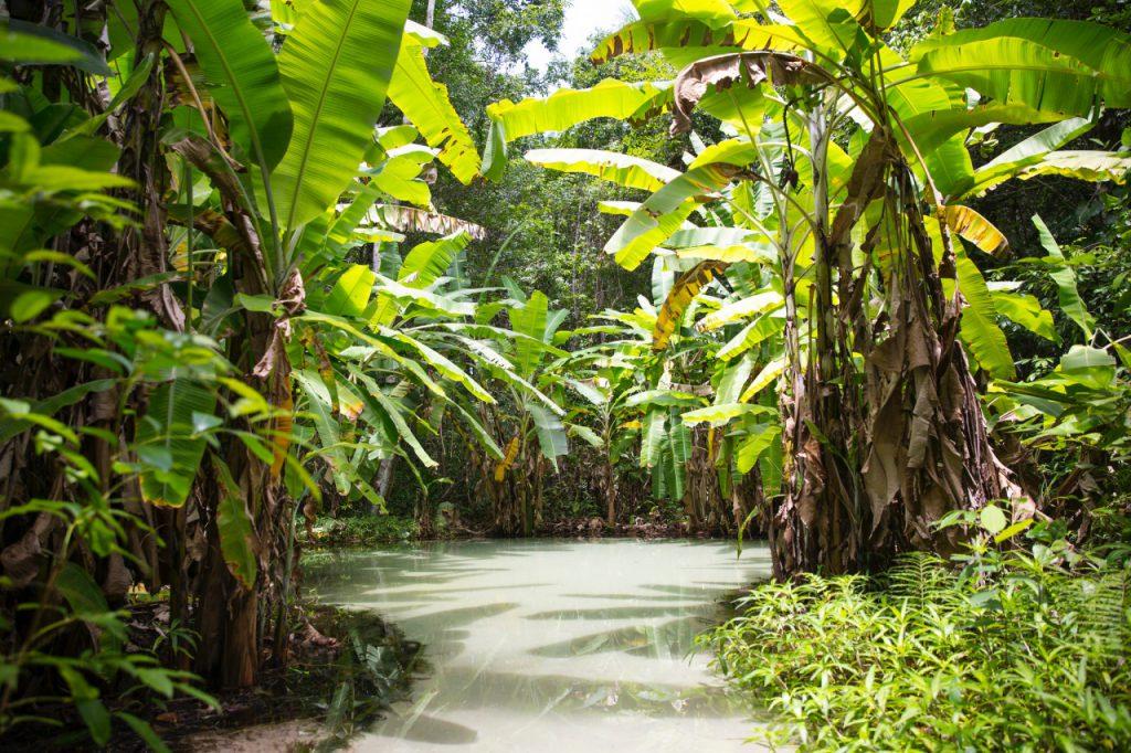 Fervedouro do Ceiça, Jalapão - Tocantins