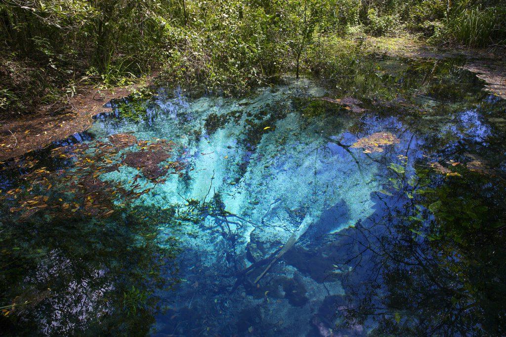 40367785564 20edd2fa61 k 1024x683 - Bonito - Um paraíso do ecoturismo no Mato Grosso do Sul