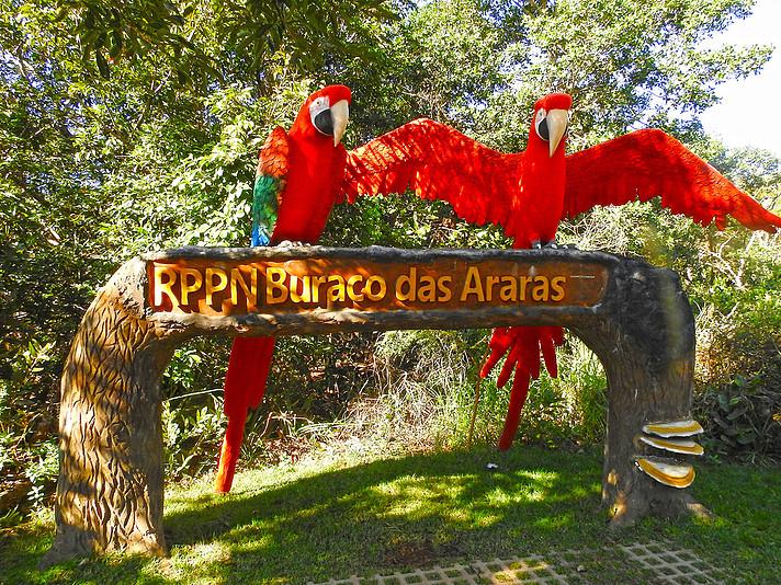 e1288b 503e7e3ae4be470d87b32dd458bc327amv2 d 2000 1500 s 2 - Bonito - Um paraíso do ecoturismo no Mato Grosso do Sul