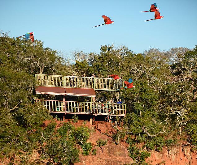 e1288b 5a23fabaadf046b981bbea64f5bc1fc3mv2 d 2000 1680 s 2 - Bonito - Um paraíso do ecoturismo no Mato Grosso do Sul