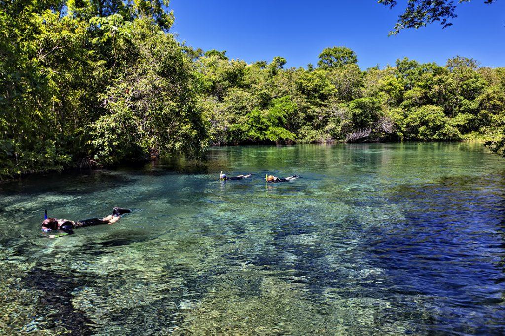 nascente rio olho dagua marcio cabral 1 1024x682 - Bonito - Um paraíso do ecoturismo no Mato Grosso do Sul