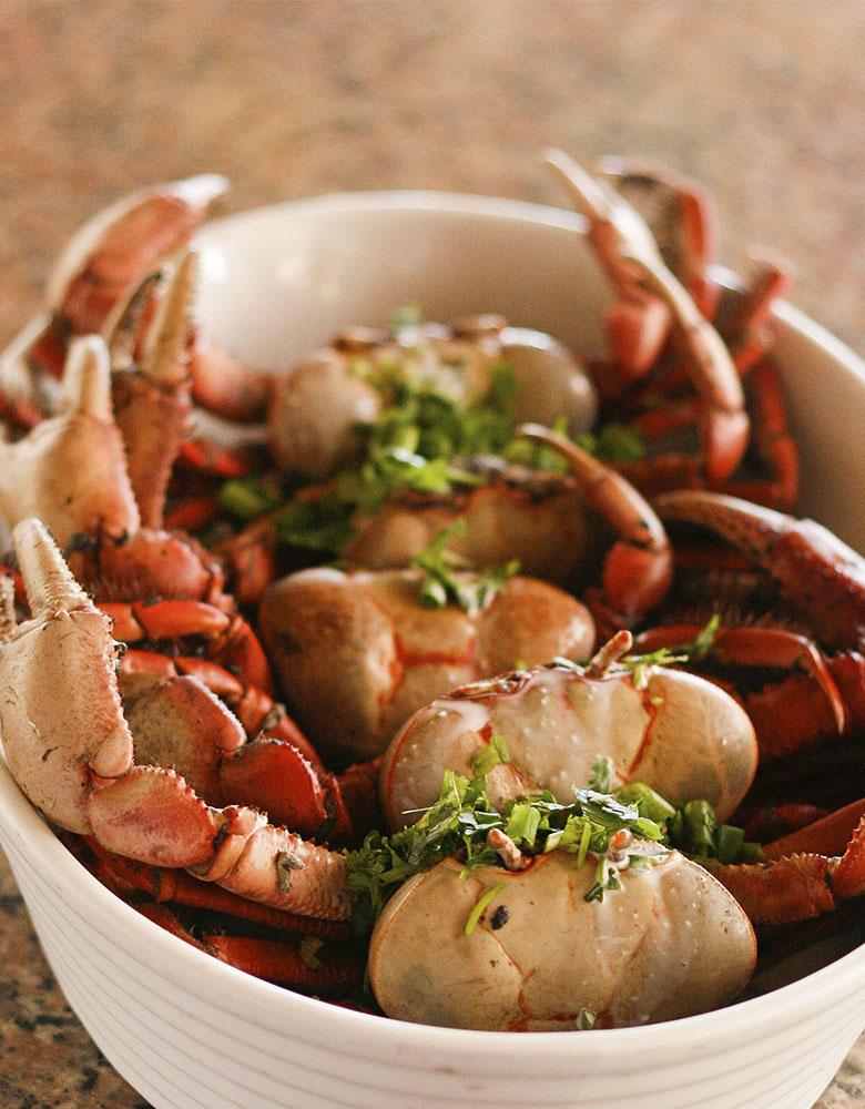 comida home - Roteiro Gastronômico: os melhores lugares para descobrir a culinária cearense