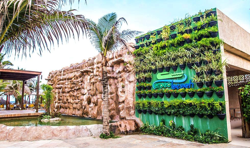 croco destaque 03 980x580 - 5 melhores barracas da Praia do Futuro Fortaleza