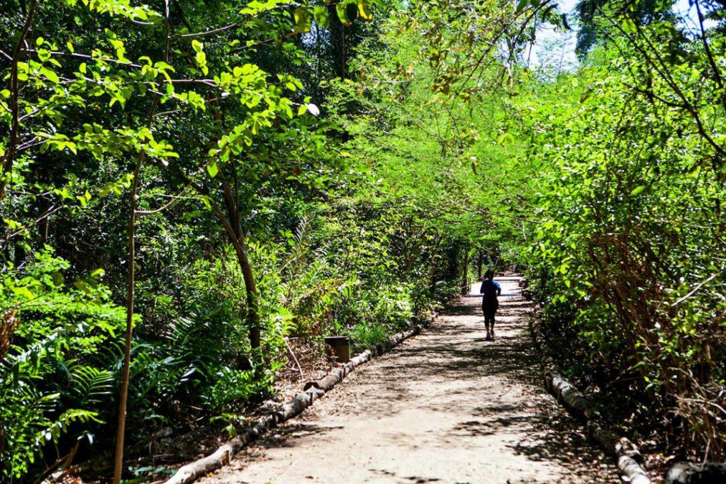 vos governo 4 lugares por onde a cidade respira Coco 1 1024x683 - Fortaleza é também destino ideal para visitar com as crianças