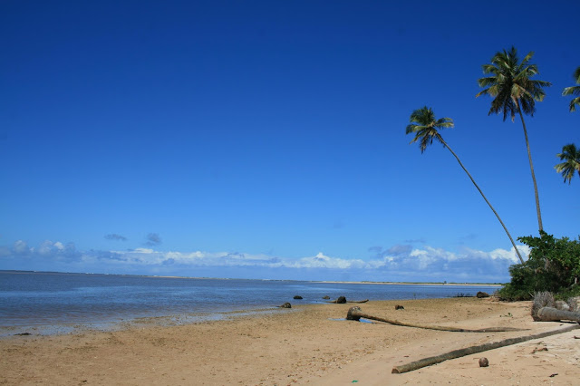 3879730658 58d1fa21bc o - São Miguel dos Milagres Alagoas -  Conheça a Costa dos Corais