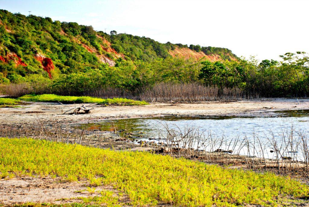 A Praia de Ponta Grossa é um dos cenários mais encantadores do Ceará. Aqui, o turismo de experiência combina vivências sociais e ambientais