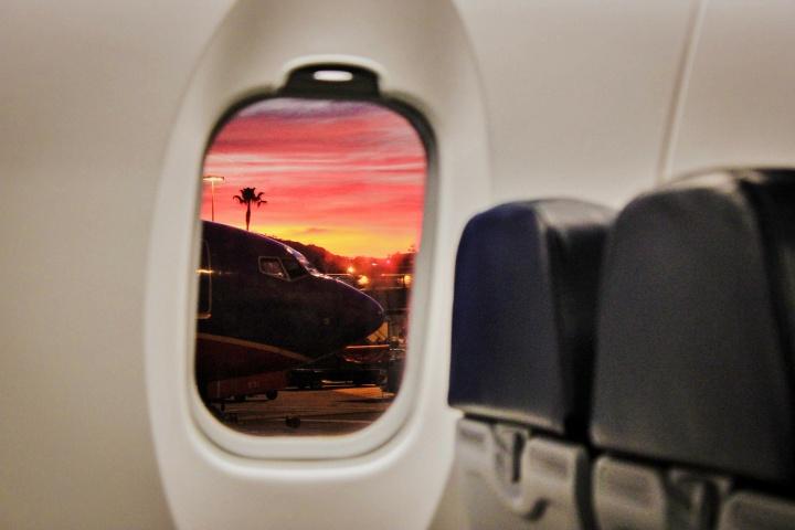 aircraft airplane airport 585009 - Viagem com Pets - dicas e informações importantes antes de embarcar