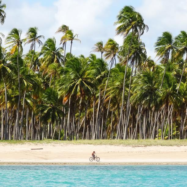 casa bicicleta - São Miguel dos Milagres Alagoas -  Conheça a Costa dos Corais