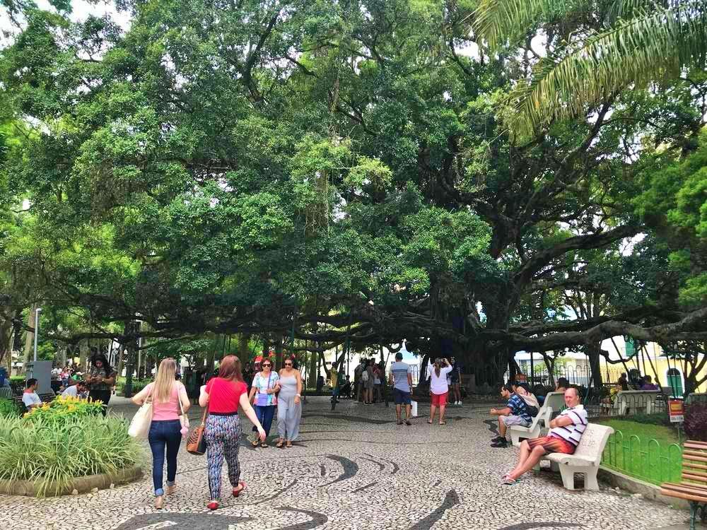 praca xv de novembro - Florianópolis - os melhores passeios e locais para você aproveitar
