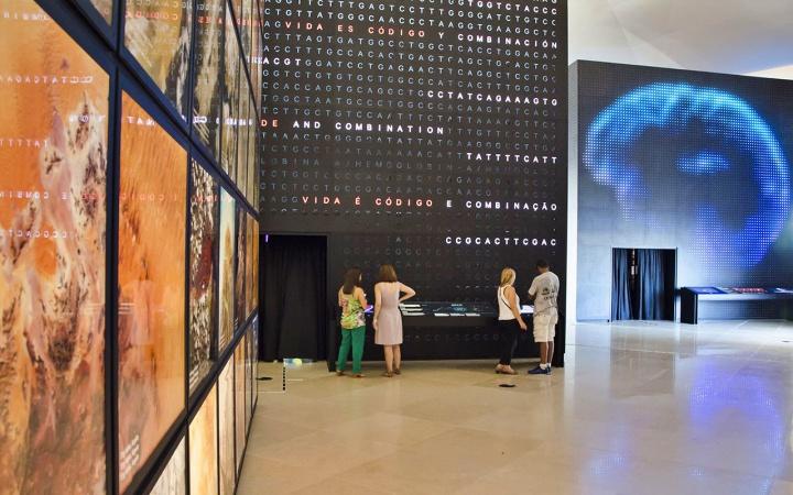 Terra ByronPrujansky  Terra - Museu do Amanhã RJ - Exposições, como chegar e quando visitar