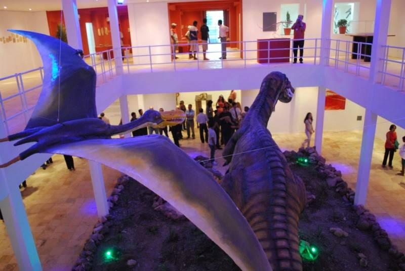 museu de paleontologia 1 - Ceará - As Histórias e personagens inusitados
