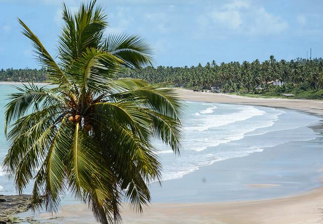 39714561750 e7b466d281 z - 10 super destinos para aproveitar o réveillon no Brasil