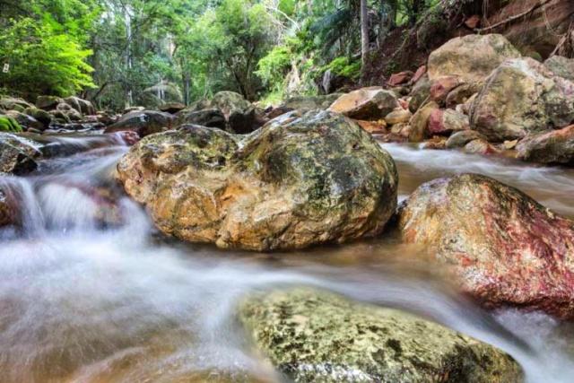 Parque Estadual Sitio Fundao 113 768x512 - 5 atrativos imperdíveis para visitar na Região do Cariri