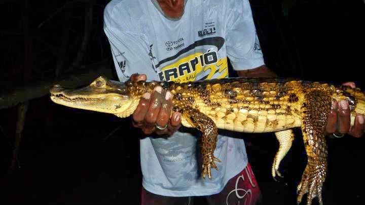 305376 115142335257139 100002841195388 78806 132543327 n - Pantanal, MT: 6 atrativos para você descobrir a região
