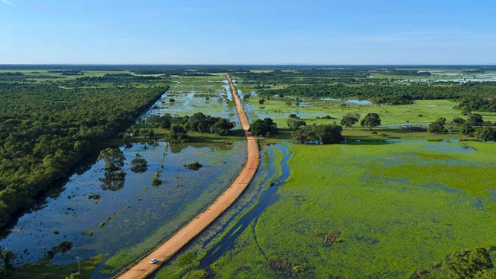 40958342051 e166e71c67 c - Pantanal, MT: 6 atrativos para você descobrir a região