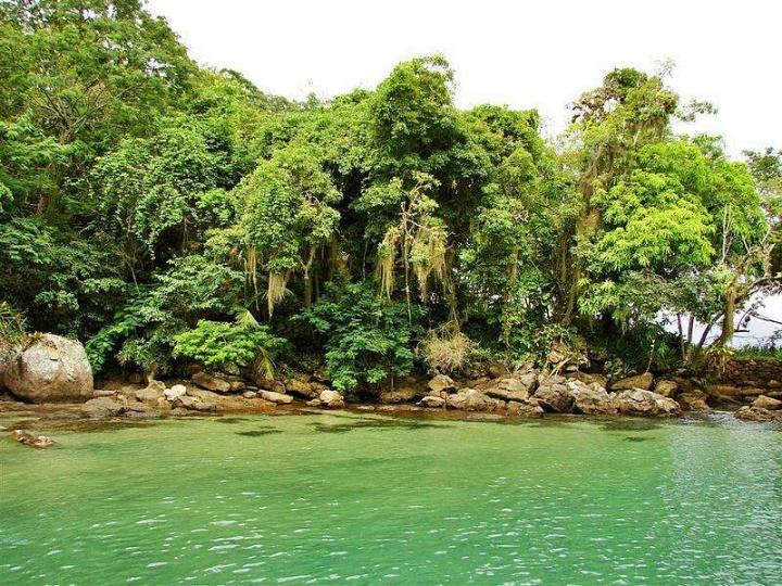 ilha grande lagoa verde glauco umbelino wikimedia commons - Ilha Grande RJ - 8 passeios essenciais para fazer na região