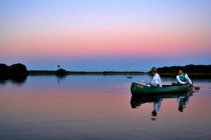 pantanal19 - Pantanal, MT: 6 atrativos para você descobrir a região