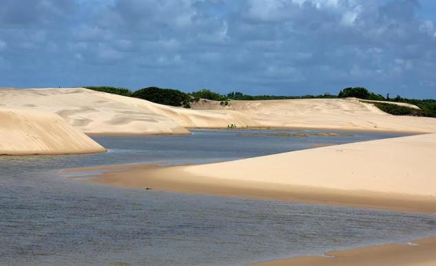 Ilha do Caju Chico Rasta10 - Delta do Parnaíba - Um santuário ecológico do Brasil
