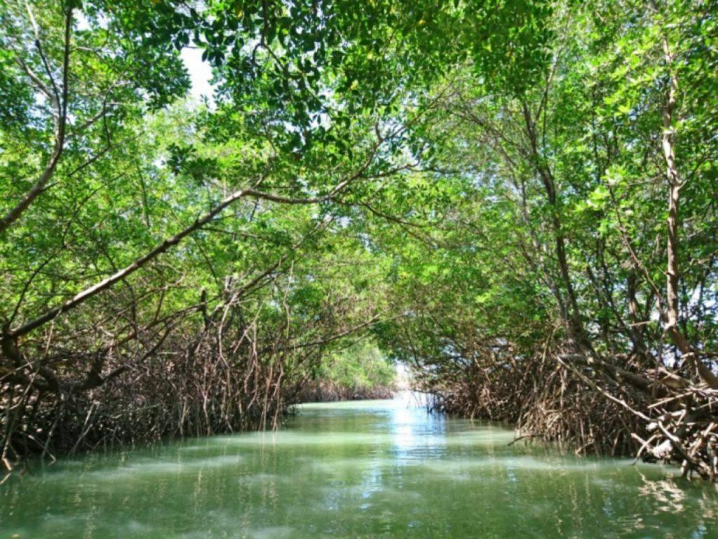 icaraizinho hula hula moitas 8 1024x768 1 1024x768 - Icaraizinho de Amontada: Entre praias e rios, um paraíso para você aproveitar