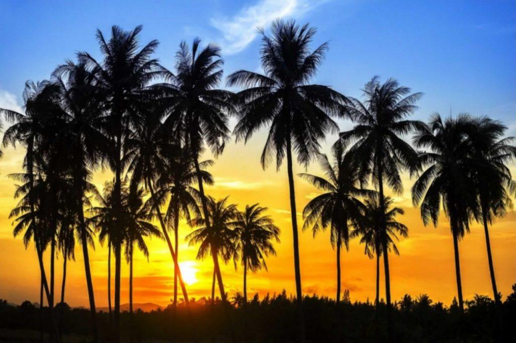 slider pordosol 1024x693 2 1024x681 - Icaraizinho de Amontada: Entre praias e rios, um paraíso para você aproveitar