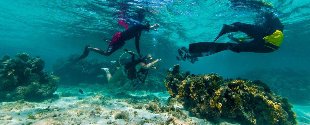 01 mergulho corais maragogi 1024x416 - Viajando em família? Conheça 5 resorts para se hospedar com os pequenos