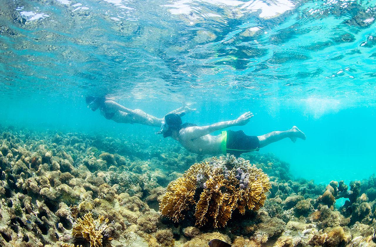 3 piscinas naturais japaratinga - A 10 km de Maragogi, Japaratinga tem praias paradisíacas, piscinas naturais e muito mais