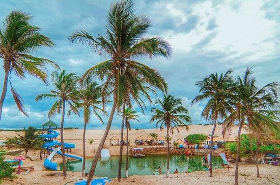 coqueiros e lagoa - Mini-guia: 8 melhores barracas de praia em Canoa Quebrada