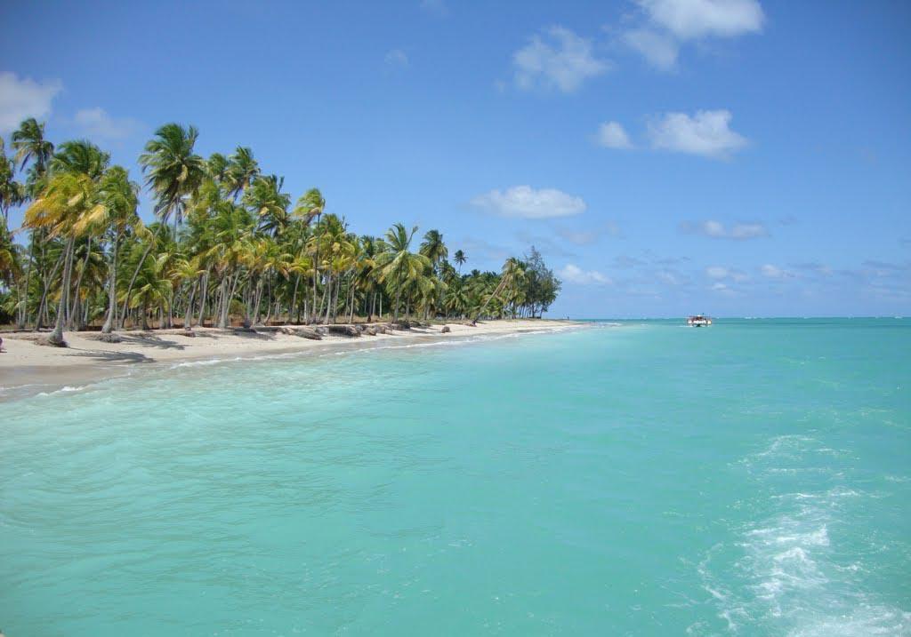 praia de antunes - 10 praias paradisíacas para você curtir no litoral de Alagoas