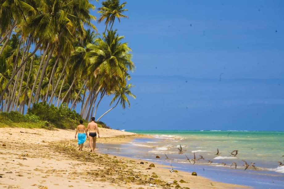 praia patacho sao miguel dos milagres - 10 praias paradisíacas para você curtir no litoral de Alagoas