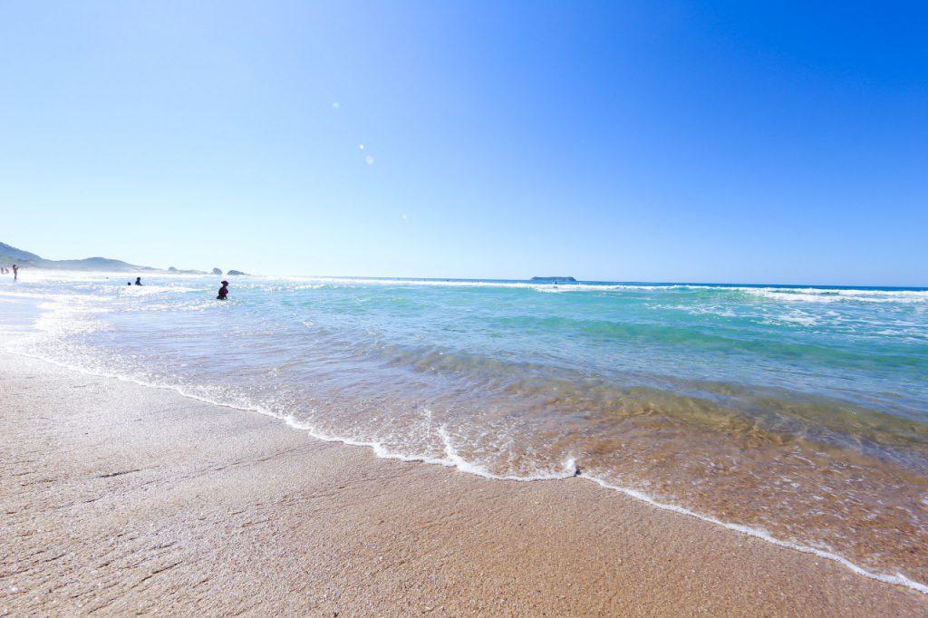 praia–mole–santa–catarina 1024x682 - 10 praias de Santa Catarina que você deveria conhecer