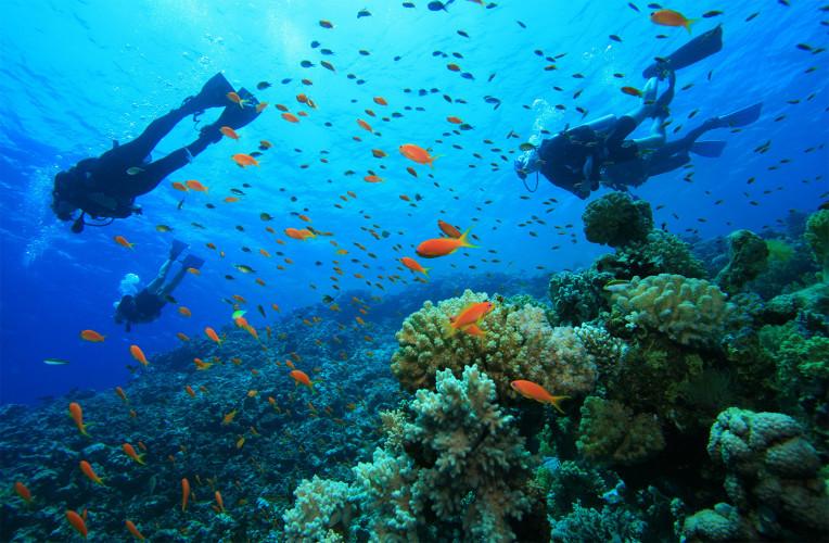 batismo mergulho em arraial do cabo rj1 large - O que fazer em Arraial do Cabo: planeje sua viagem