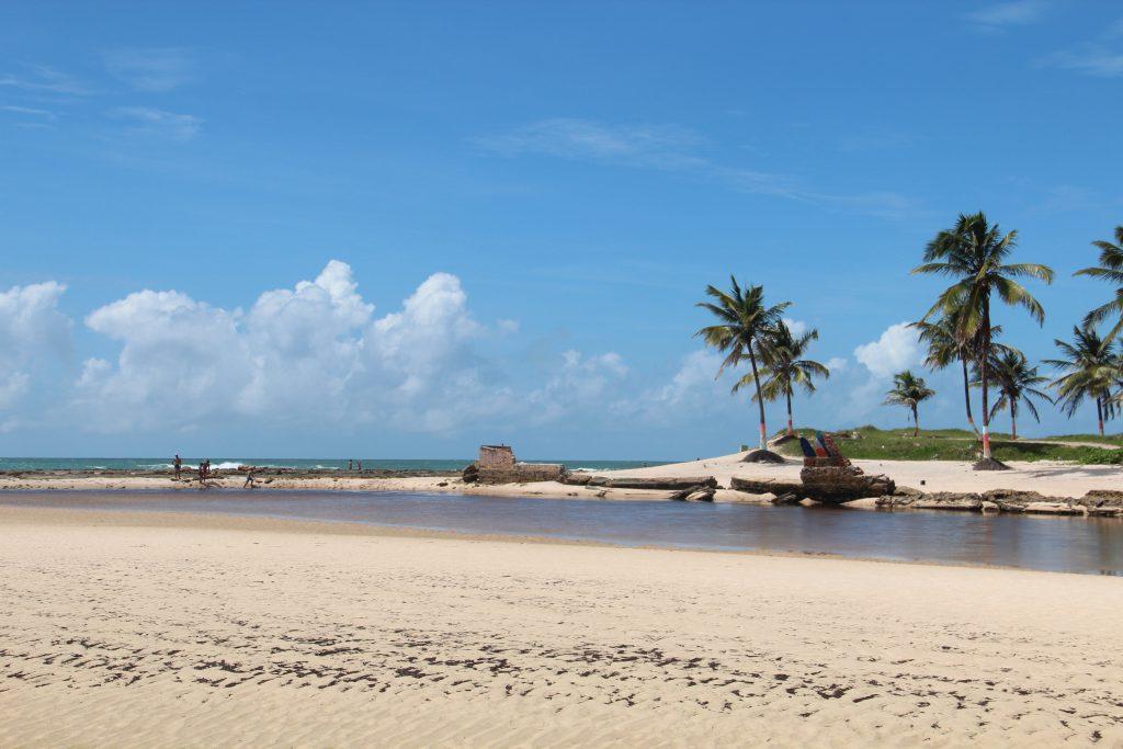 praia–de–sibaúm pipa 1024x683 - 8 melhores praias de Pipa, em Tibau do Sul RN