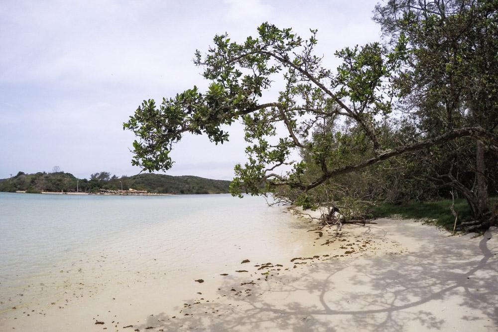 praia cabo frio 32 - Conheça 8 praias paradisíacas na Região dos Lagos – RJ