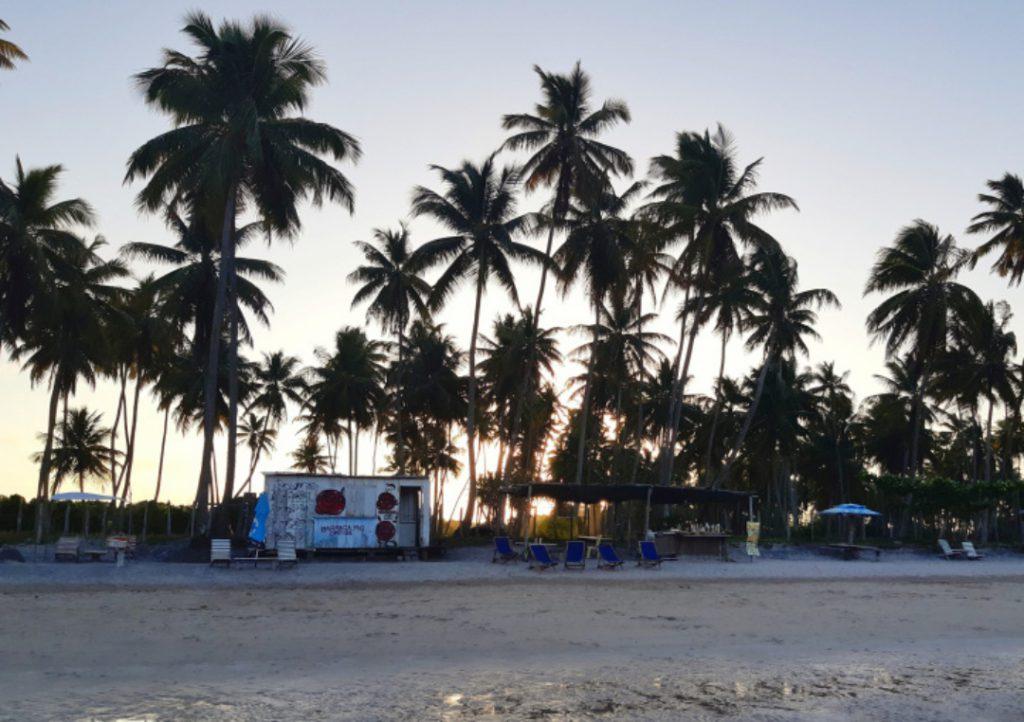 25 bar na praia da cueira 01 1 1024x722 - Água morna e cristalina, piscinas naturais, quilômetros de areia branca e coqueiros compõem o cenário paradisíaco de Moreré