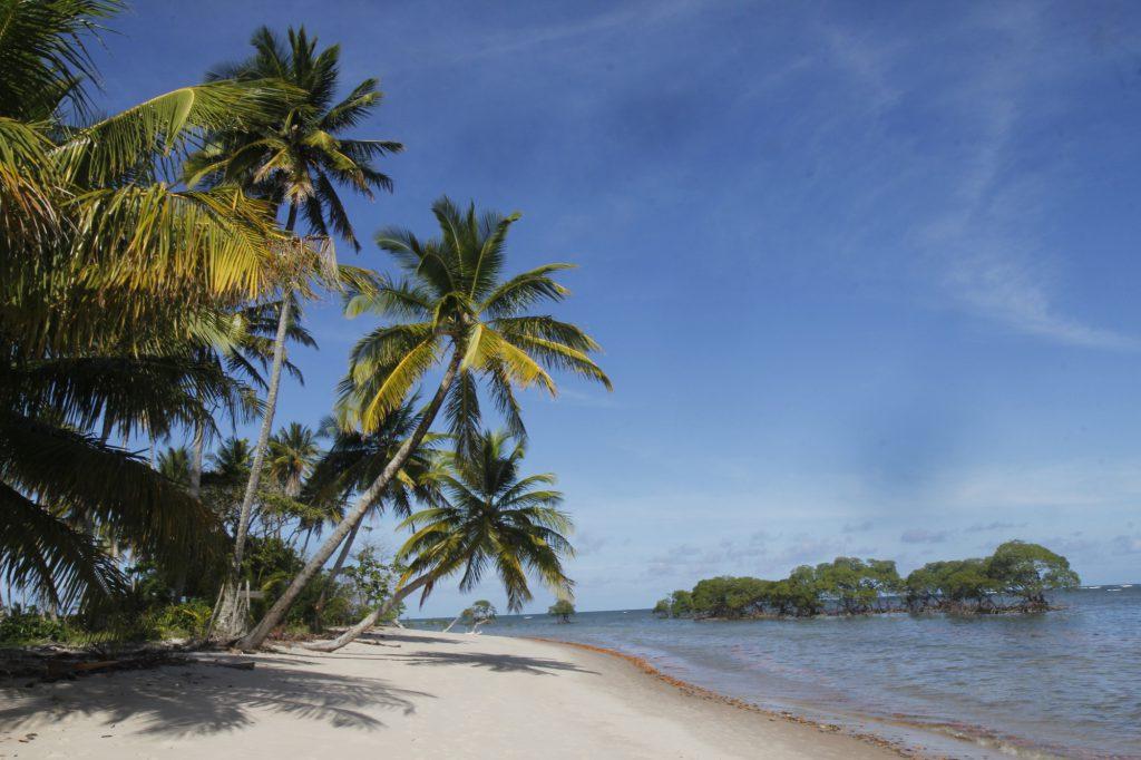 castelhanos03 1024x682 - Água morna e cristalina, piscinas naturais, quilômetros de areia branca e coqueiros compõem o cenário paradisíaco de Moreré