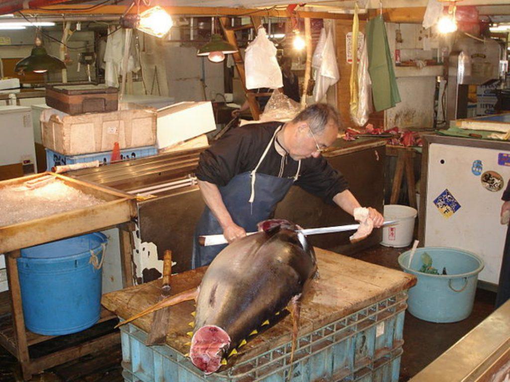 640px Tsukiji fish market 20 1 1024x768 - Onde fazer compras em Tóquio: 6 lugares para incluir no roteiro