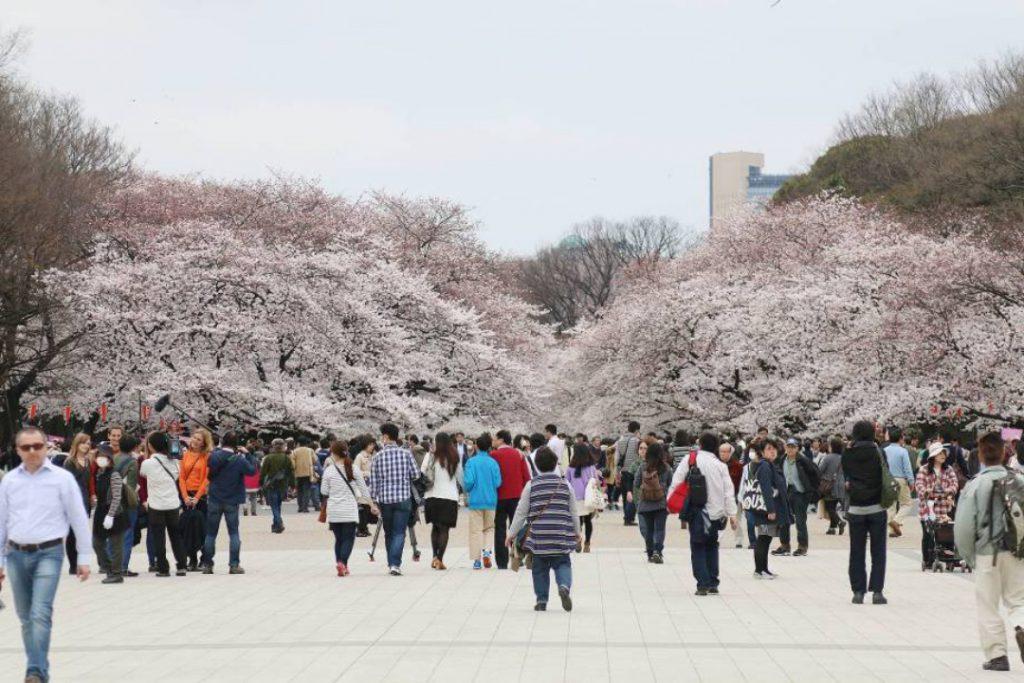 Parque Ueno 1024x683 - O que fazer em Tóquio: 10 dicas para sua primeira viagem à capital japonesa