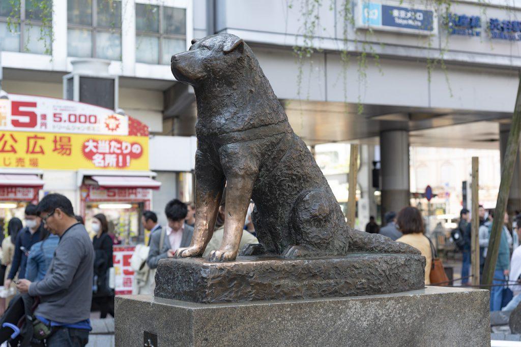 japan 5430075 1280 1024x683 - O que fazer em Tóquio: 10 dicas para sua primeira viagem à capital japonesa
