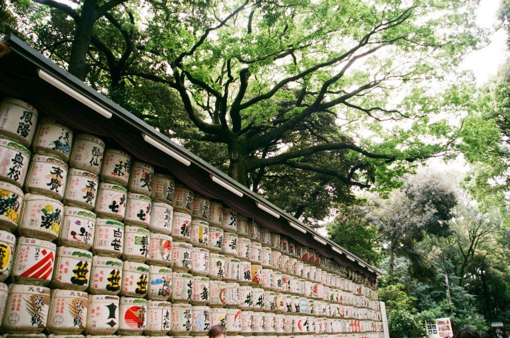 pexels vitalna 3800108 1024x678 - O que fazer em Tóquio: 10 dicas para sua primeira viagem à capital japonesa