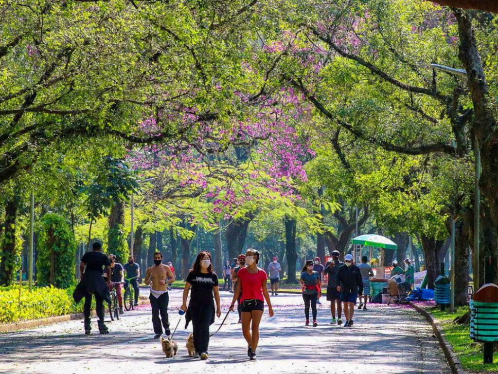 Lazer no Parque do Ibirapuera após a flexibilização do isolamento social durante a pandemia de covid 19 1024x768 - 10 dicas de atrativos para sua primeira visita em São Paulo