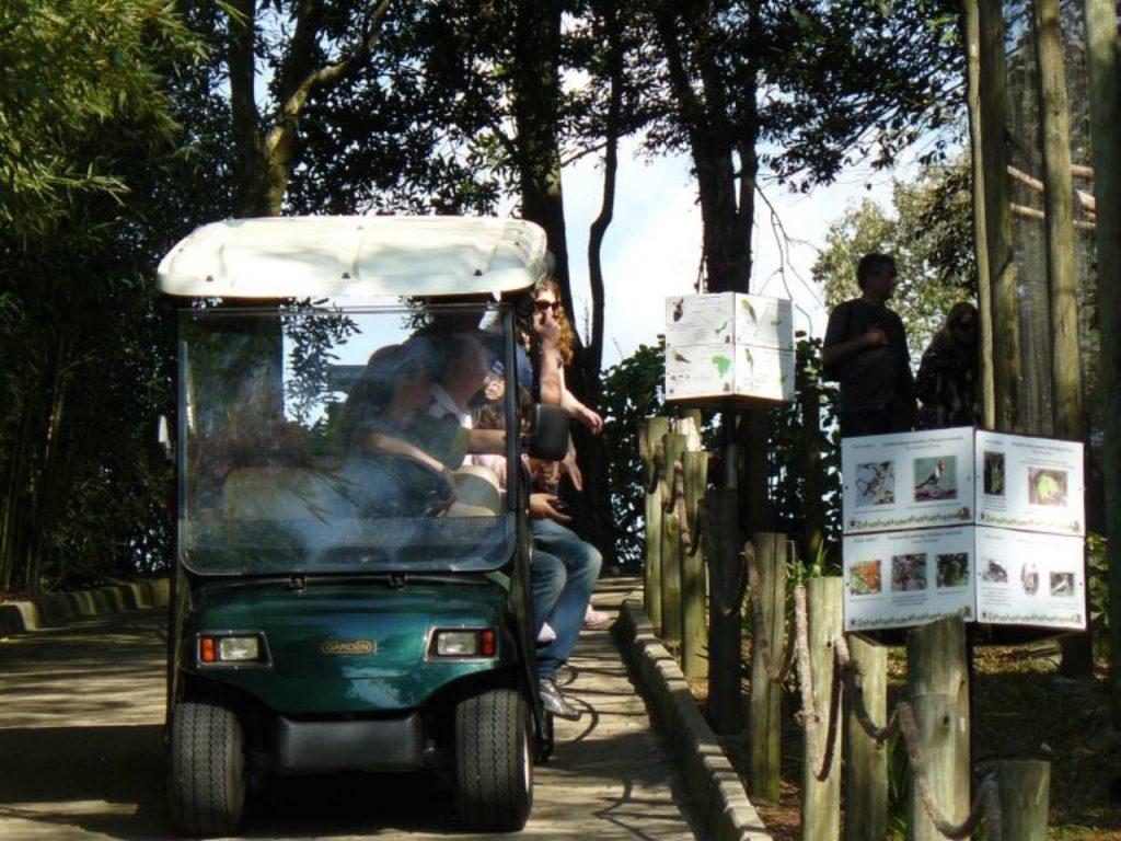 gramado zoo 14 1024x768 - O que fazer em Gramado RS: 10 melhores atrativos da cidade